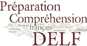 preparation-delf